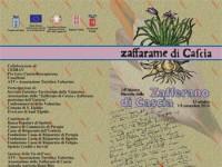 Mostra Mercato dello Zafferano di Cascia 2014