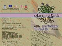 Mostra Mercato dello Zafferano di Cascia 2015
